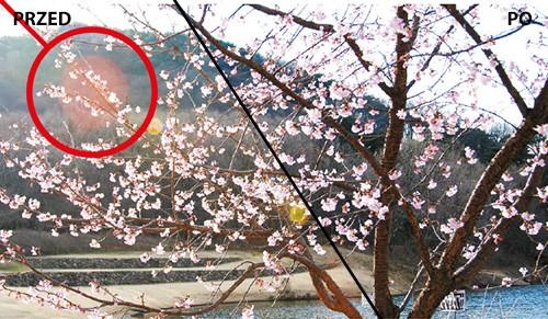 Filtry fotograficzne Marumi EXUS UV